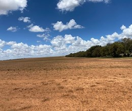 DRY LANDS / GRAZING FARMS - BULTFONTEIN / THEUNISSEN - FREE STATE